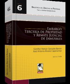 Embargo Tercería de Propiedad y Remate Judicial de Inmuebles